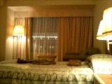 ホテル着いた〜。